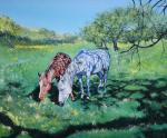 Horse in Apple orchard