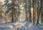 Morning in winter forest
