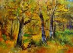 In deciduous forests