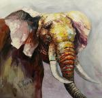 Elephant. Timid acquaintance