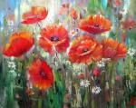 May poppies