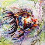Goldfish for the fulfillment of desires. N3