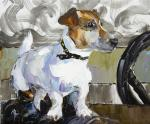 Jack Russell Terrier. Waiting for the Host N3