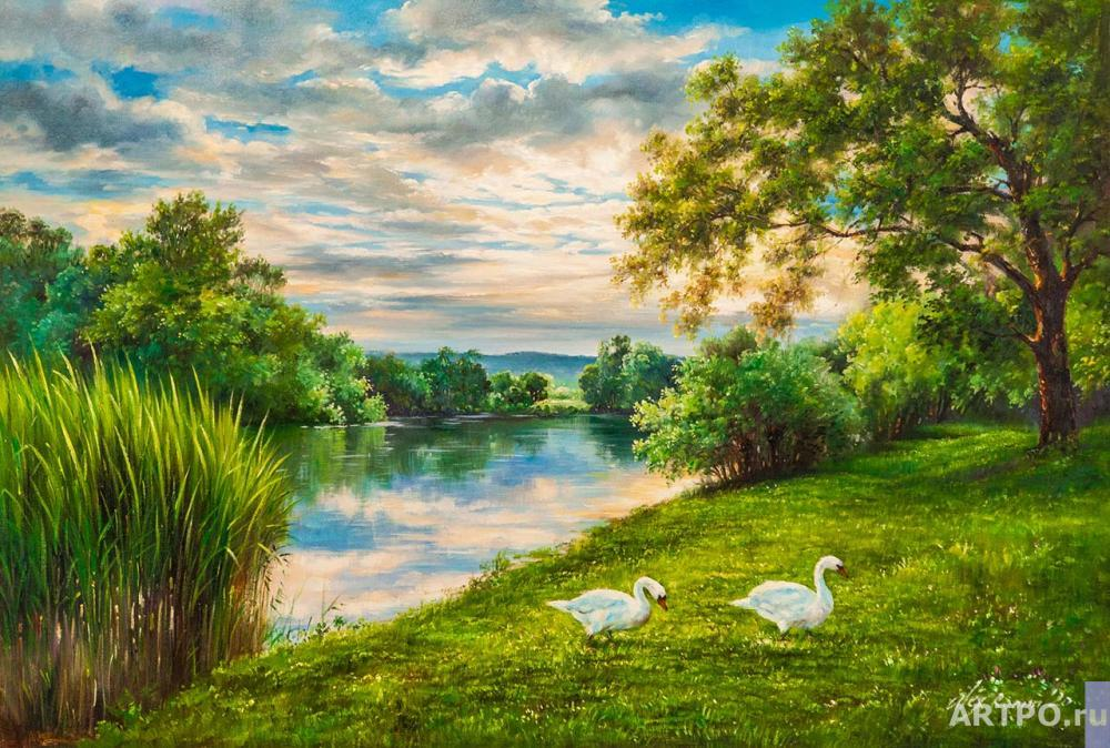 Romm Alexander. Swans on the river bank