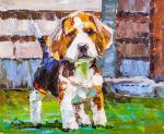 Beagle. Faithful friend N2