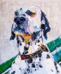 Dalmatian. A devoted friend
