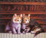 Kittens walked on the piano